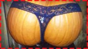HOW TO MAKE LOVE TO A PUMPKIN? – CREAM PIE #2